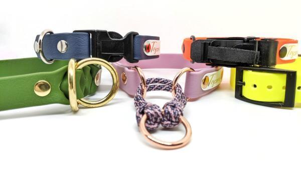 collari per cani toscani store vista su collezione completa