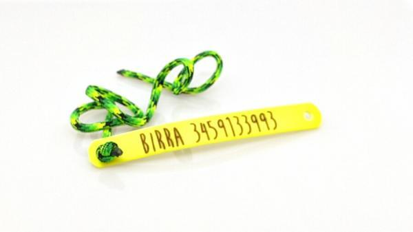 tag di riconoscimento per cani giallo con paracord toscani store