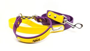 collare e guinzaglio per cani toscani store viola e giallo special edition Lakers