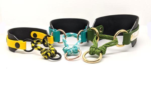 Collari Toscani Store collezione LEVRIERO piccolo medio e grande fronte