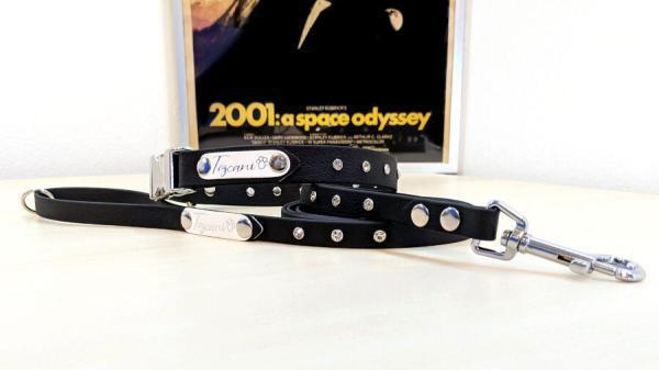 Edizione limitata odissea nello spazio 2001 completo per cani toscani store 2